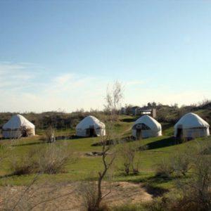 yurt-camp1